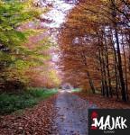 majak-podzim